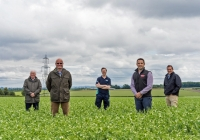 40 North England pea farmers collaborate with Birds Eye to cut carbon